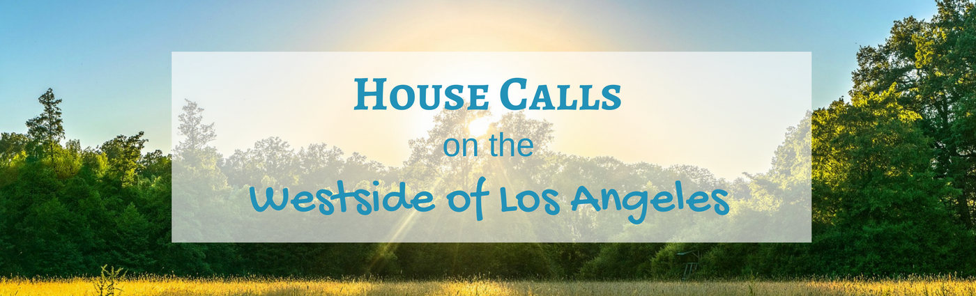 Los Angeles Concierge Therapy House Calls Psychologist